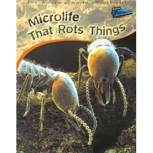 Microlife That Rots Things (Amazing World of Microlife