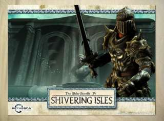 R503 The Elder Scrolls 4 TES4 Oblivion Warrior POSTER