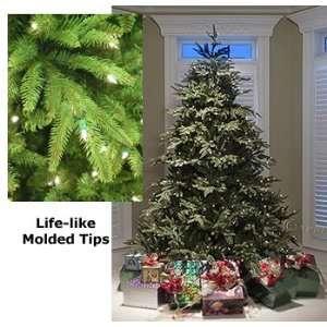 Asheville Frasier Fir   7.5   Artificial Christmas Tree