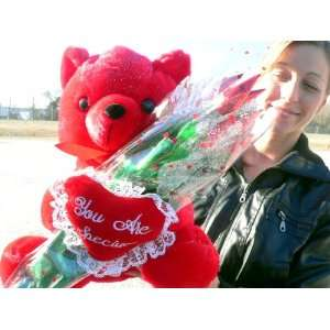 RED TEDDY BEAR HOLDING 1 DOZEN CHOCOLATE ROSES! Handmade Florist Style
