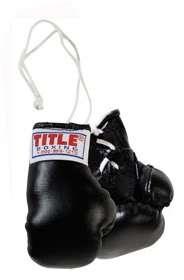 TITLE 3 MINI BOXING GLOVES bag mma training heavy bk