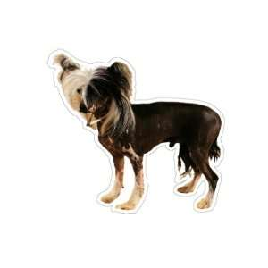 CHINESE CRESTED   Dog Decal   sticker car got graphic