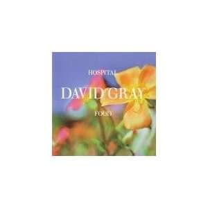 Hospital Food (Cd Single) David Gray Music