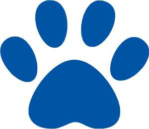 6PCS 4 DOG PAW FOOTPRINT VINYL WALL CAR DECAL STICKER