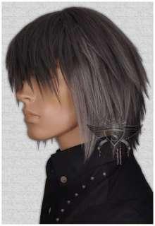 GW393 Grey Short Straight Punk EMO Costume Mens Wig