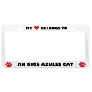 An Ojos Azules Cat Pet White Metal License Plate Frame Tag