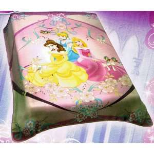 Disney Princess Full Blanket ~ Cinderella, Sleeping Beauty