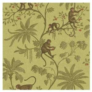 Sunworthy Jungle Of Monkeys Wallpaper CR061671 Baby