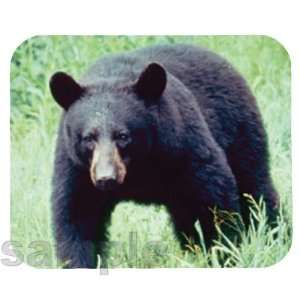 American Black Bear Mouse Pad