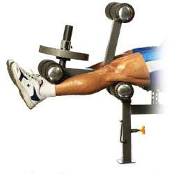 Leg Extension Leg Curl Attachment for Workout Bench