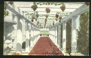 Pergola And Grapevine Atlantic City New Jersey Postcard