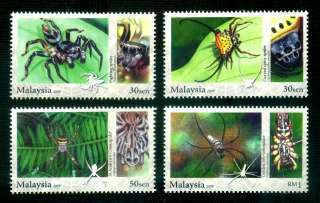 ARACHNIDS OF MALAYSIA Spider Insect Animal Fauna MNH