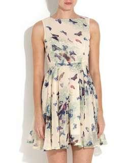 Cream (Cream) AX Paris Cream Butterfly Print Chiffon Dress  257616113