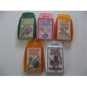 Baby Animals, Littlest Pet Shop, Bronx Zoo and Horses Toys & Games