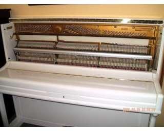 Pianoforte verticale niedermeyer a Volla    Annunci