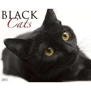 Black Cats 2011 Wall Calendar [Calendar] Willow Creek