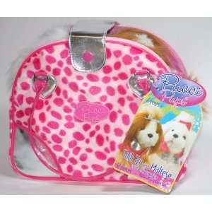 Pucci Pups Shih Tzu and Maltese in Trendy Carrier with