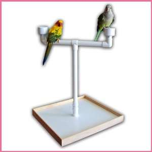 Portable Table Top Perch Parrot Stand
