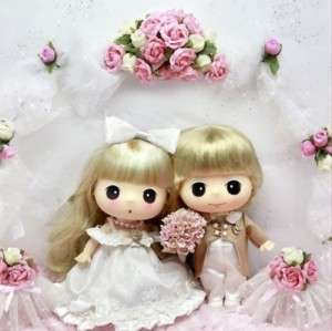 Lovely Cute Collectible Doll 18cm Wedding Couple DDUNG