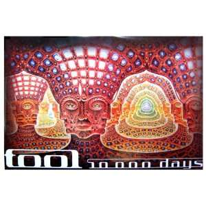 TOOL NET OF BEING 10000 DAYS ALEX GREY JUMBO POSTER 40 X