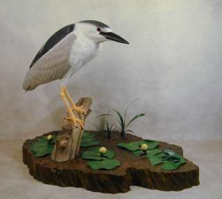 Black crowned Night Heron Original Wood Carving